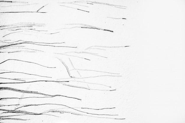 Les restes des racines de l'arbre vu sur un mur blanc