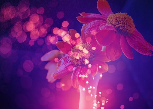 Résumé de fleurs avec des lumières de bokeh