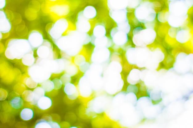Résumé flou lumière bokeh vert