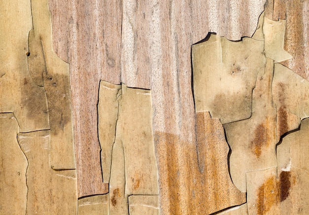 Résumé de la surface en bois sombre ancien usé avec le temps qui est détruit à l'extérieur par des phénomènes naturels
