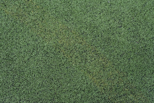 Résumé de la texture de l'herbe artificielle en vue de dessus.