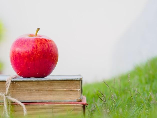 Retour au concept de l'école. pomme rouge et stylo mis sur une pile de vieux livres