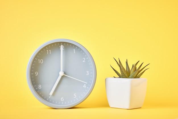 Réveil et plante dans un pot sur fond jaune