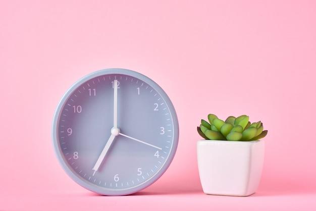 Réveil et plante en pot sur fond rose, gros plan
