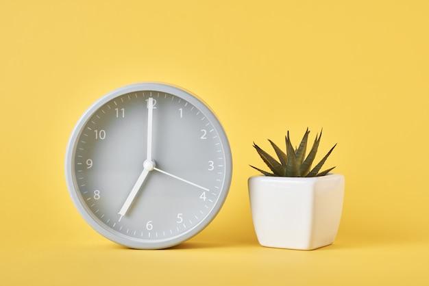 Réveil et plante en pot sur jaune, gros plan