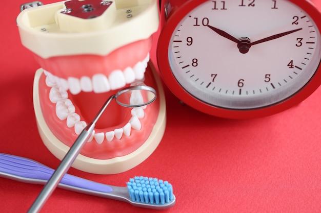 Réveil rouge mâchoire humaine artificielle et instrument dentaire sur table soir et matin oral