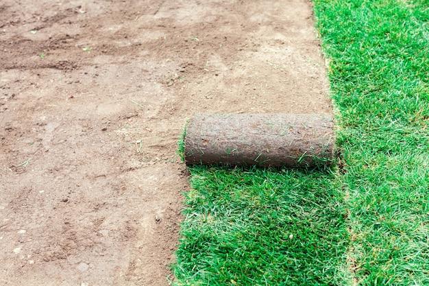 Revêtement du sol avec des rouleaux verts d'une pelouse