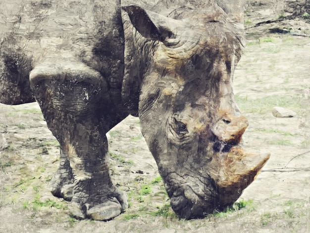 Rhinocéros. art digital impasto peinture à l'huile abstraite.