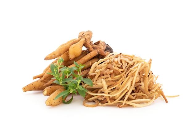 Rhizome de racine de doigt ou de galingale et stevia isolé sur fond blanc.