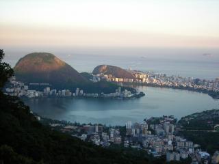 Rio de janeiro, la forêt