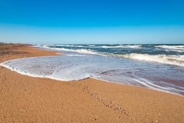 Rive de plage par une chaude journée d'été ensoleillée