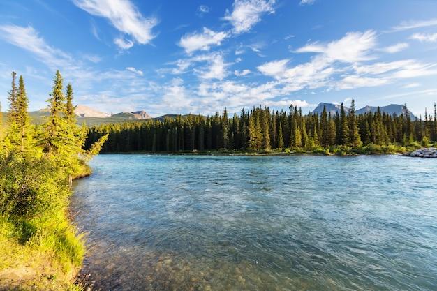 Rivière athabasca dans le parc national jasper