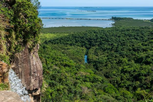 Rivière cascade pinaisara qui coule entre la forêt de mangroves dégradé bleu mer iriomote island