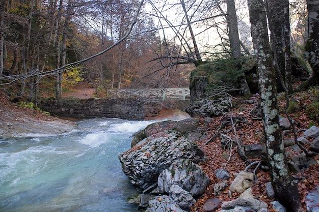 Rivière dans le parc national d'ordesa, pyrénées, huesca, aragon, espagne