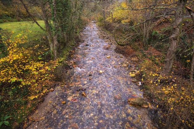 Rivière dans le parc naturel de somiedo, asturies, espagne.