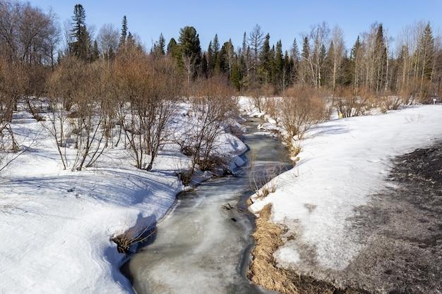 Rivière gelée en hiver dans la forêt. journée ensoleillée. beau paysage d'hiver.