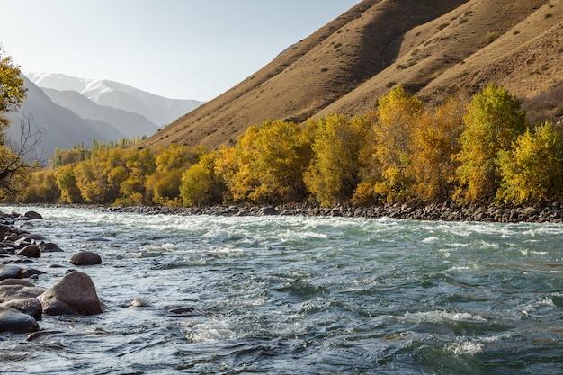 Rivière kokemeren, district de jumgal, kirghizistan