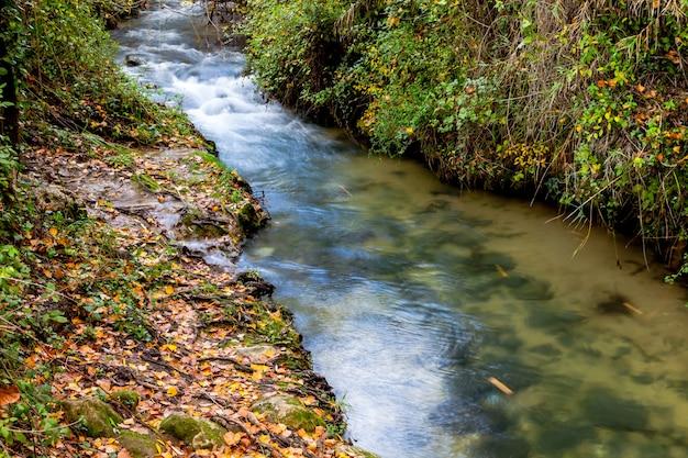 Rivière majaceite