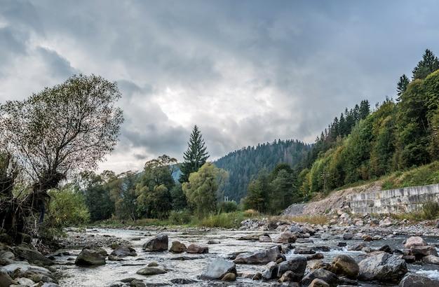 Rivière de montagne des carpates