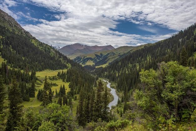 Rivière de montagne dans les montagnes vertes