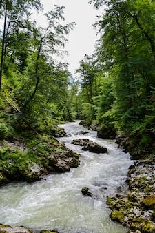 Rivière de montagne orageuse et rivage rocheux. forest valley.