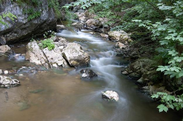 Rivière qui coule parmi les pierres