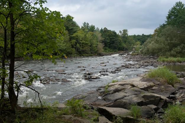 Rivière qui coule à travers une forêt, chutes de plaisance, rivière de la petite-nation, québec, canada
