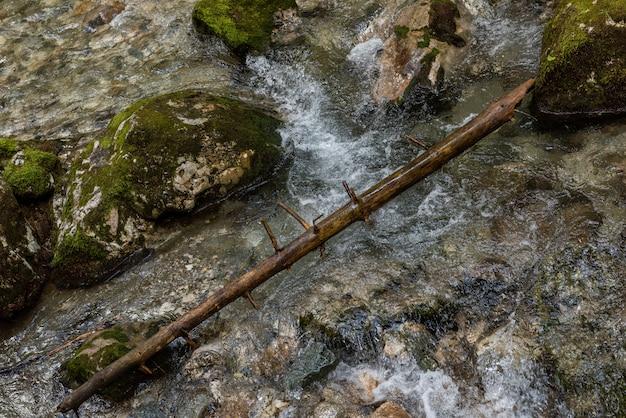 Rivière rapide près de la forêt dans les montagnes de bucegi, roumanie