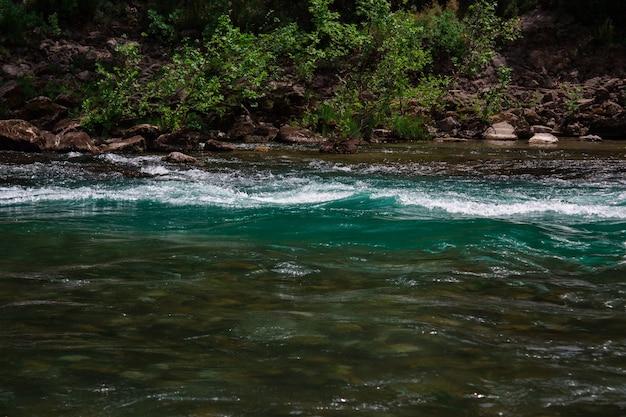 Rivière rapide avec des rapides dans les montagnes