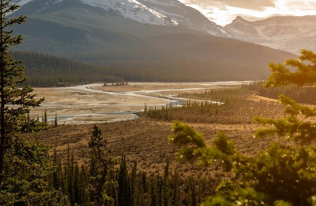 La rivière saskatchewan nord et le mont wilson au parc national banff en alberta, canada