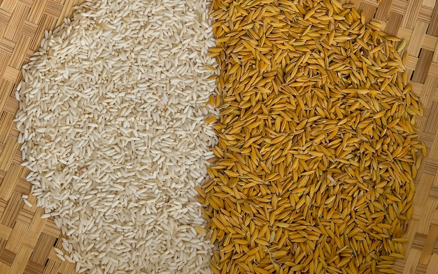 Riz blanchi et fond de riz non moulu