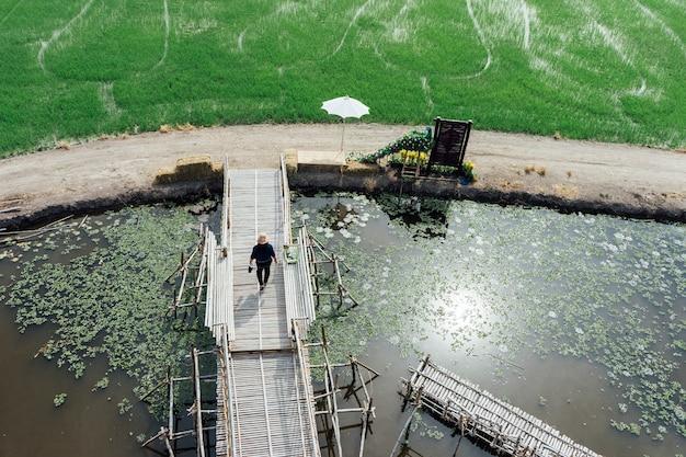 Rizière et passants sur un pont en thaïlande