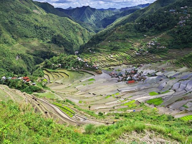 Les rizières en terrasses à banaue, aux philippines
