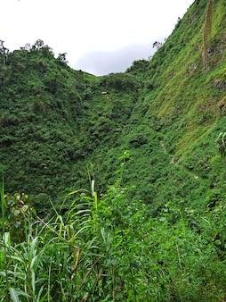 Les rizières en terrasses de banaue aux philippines