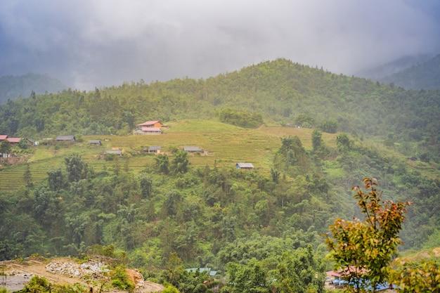 Les rizières en terrasses dans le brouillard dans les rizières de sapa vietnam préparent la récolte au nord-ouest du vietnam