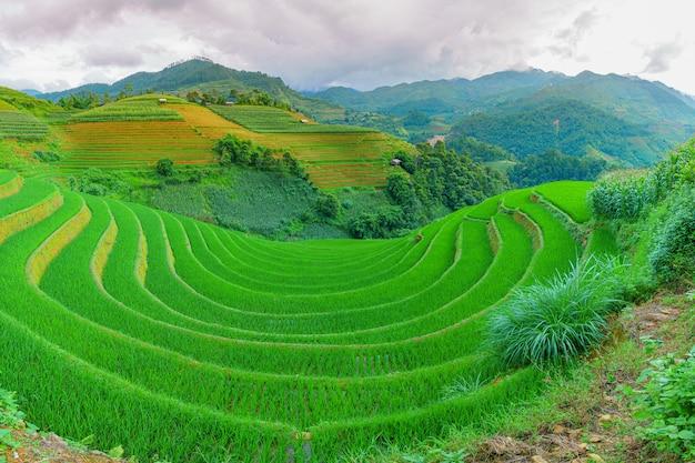 Rizières en terrasses et paysages de montagne à mu cang chai