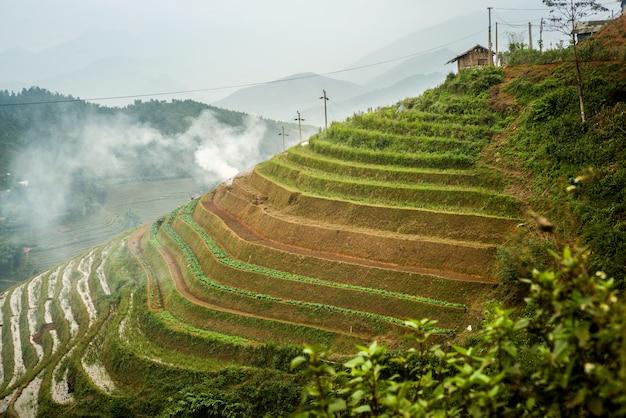 Rizières en terrasses à sapa, vietnam