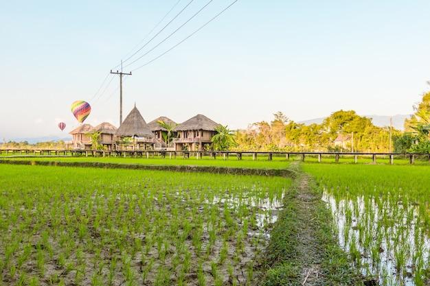 Rizières vertes et montagnes avec ballon coloré à vang vieng, laos