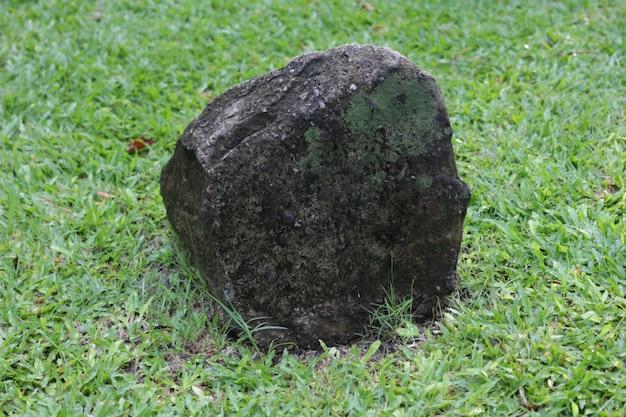 Rocher décoré ou pierre avec de l'herbe sur la base d'herbe verte isolée