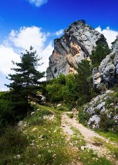 Rocher unique à la montagne en été