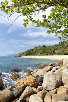 Roches et arbres sur une plage au brésil.