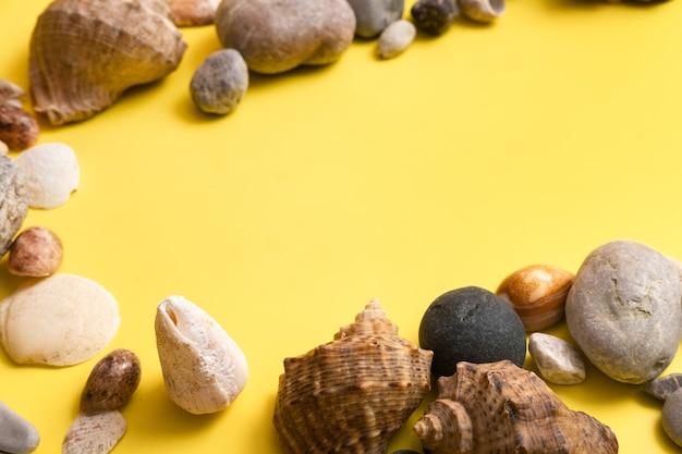 Roches et coquillages sur fond jaune .thème marin