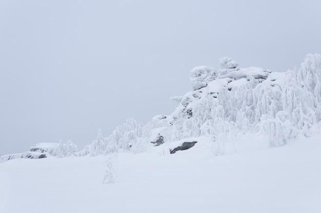 Roches couvertes de neige et arbres couverts de givre sur un col de montagne en hiver