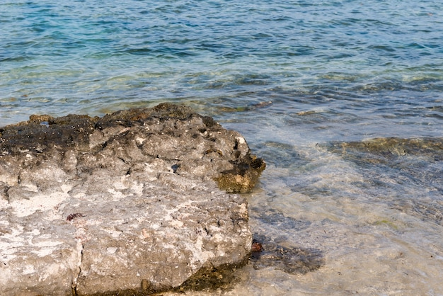 Roches sur le rivage