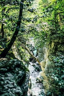 Roches rivière profonde sombre forêt rivière ruisseau paysage