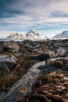 Rocheux avec de l'herbe sur le littoral avec la montagne de neige