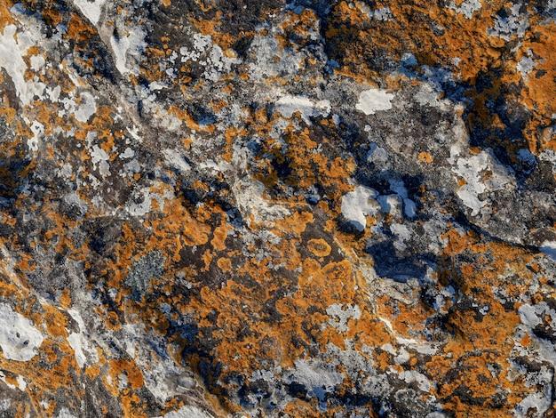 Rock avec la couleur grise et orange, fond de texture.