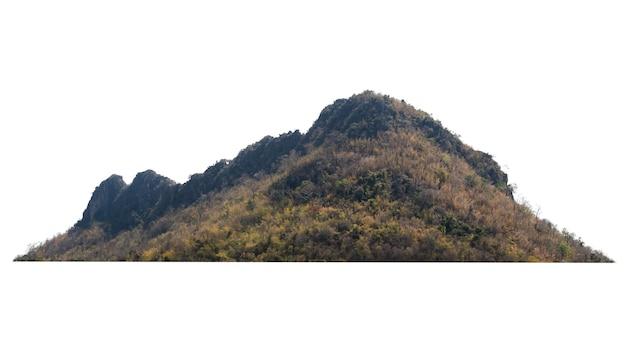 Rock mountain hill avec forêt verte isoler sur blanc
