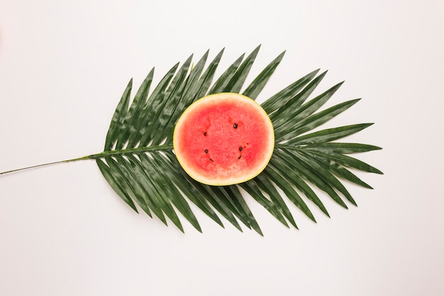Rond morceau entier de melon d'eau juteuse à la feuille de palmier