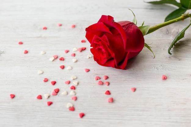 Rose avec coeurs pour la saint valentin